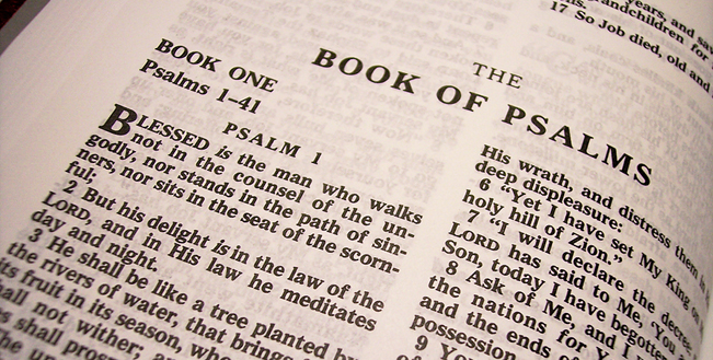 Essays on the book of psalms